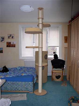 kletterbaum die zweite. Black Bedroom Furniture Sets. Home Design Ideas